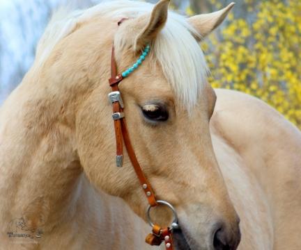 Einohr Trense Fancy Beads Create YOURS!
